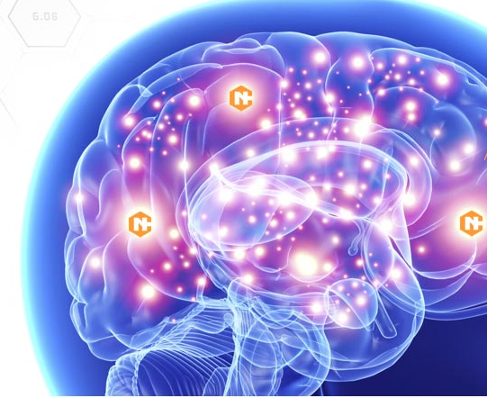 Neurocyclin – प्राइस इन इंडिया, फार्मेसी, amazon, जहां खरीदने के लिए